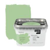 KARWEI Kleuren van Nu muurverf mat lindengroen 2,5l