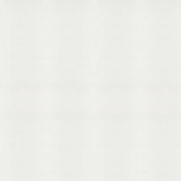 Vliesbehang wit (dessin 02-100)