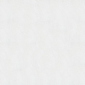 Vliesbehang spachtelpoets (dessin 33-161)