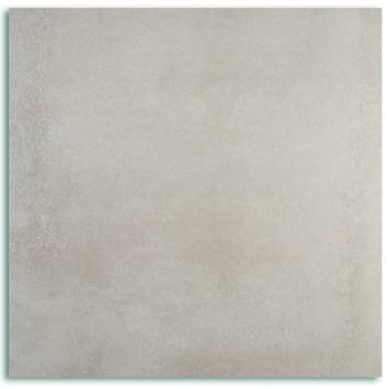 Cementi Vloertegel Grijs 60X60CM 1,44M2