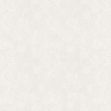 Overschilderbaar vliesbehang Plaster wit (dessin 16909)