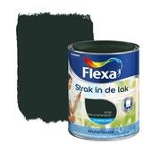 Flexa Strak in de Lak zijdeglans monumentengroen 1036 750 ml watergedragen