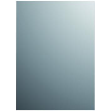 Plieger basic spiegel zilver 60 x 30 cm