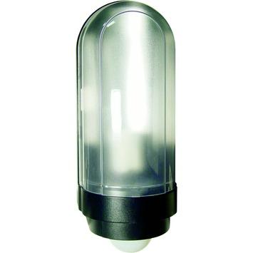 Buitenlamp Met Sensor Gamma.Karwei Buitenlamp Remon Zwart Met Bewegingssensor Kopen Wandlampen