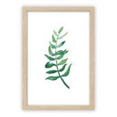 Print in frame - Olive Twig 50x70 cm