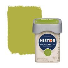 Histor Perfect Finish lak hoogglans bieslook 250 ml