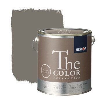 Histor The Color Collection muurverf hare brown 2,5 liter