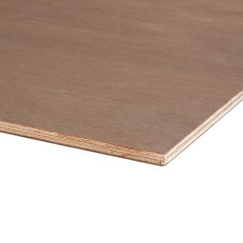Hardhout multiplex 122x61 cm dikte 12 mm