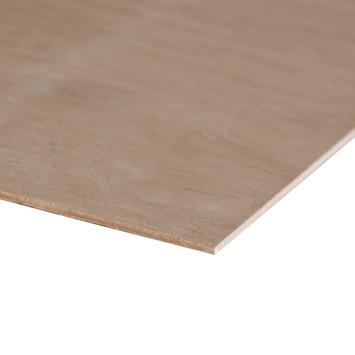 Hardhout multiplex 122x61 cm dikte 3,6 mm