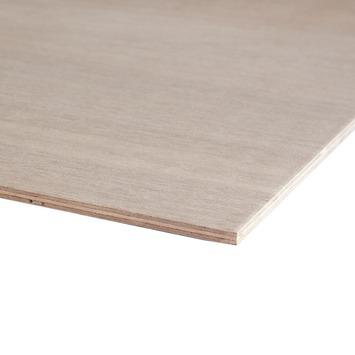 hardhout multiplex 244x122 cm dikte 12 mm kopen constructieplaten karwei. Black Bedroom Furniture Sets. Home Design Ideas