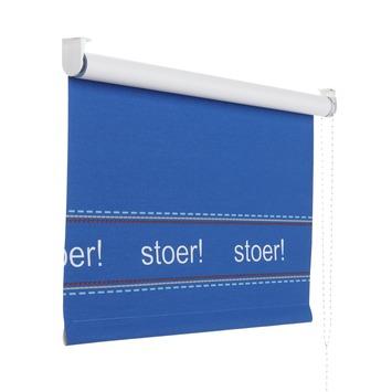 Lief! rolgordijn verduisterend dessin 2398 blauw stoer 60x190 cm ...