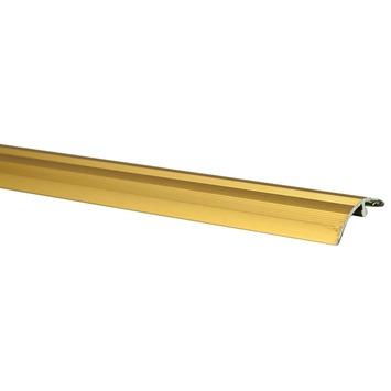 Finifix overgangsprofiel goud 41 mm 166 cm