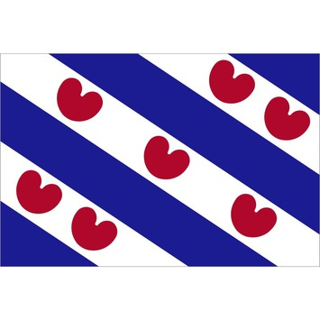 Vlag Friesland 30x45 cm