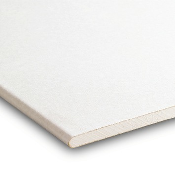 Gyproc gipsplaat 60x200 cm dikte 0,95 cm