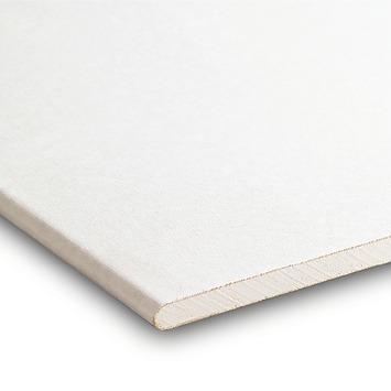 Gyproc gipsplaat 60x300 cm dikte 0,95 cm