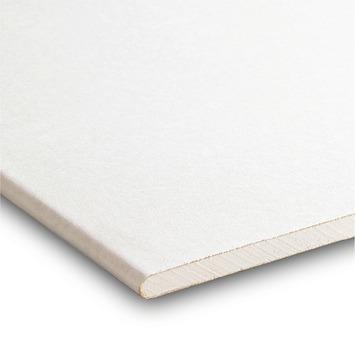 Gyproc gipsplaat 60x260 cm dikte 0,95 cm
