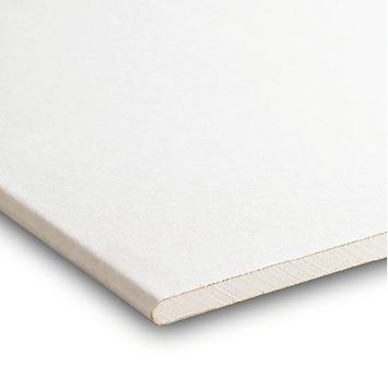Gyproc gipsplaat 60x360 cm dikte 0,95 cm