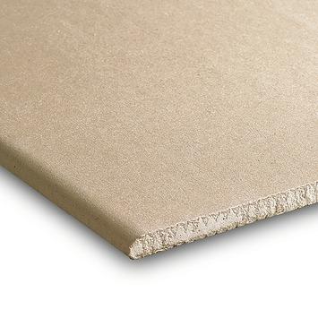 Gyproc gipsplaat stucplaat 40x200 cm dikte 0,95 cm