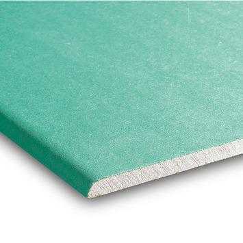 Gyproc badkamer gipsplaat 60x120 cm dikte 0,95 cm