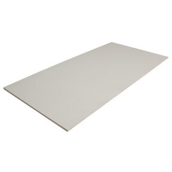 Hardhout multiplex gegrond 122x61 cm dikte 12 mm