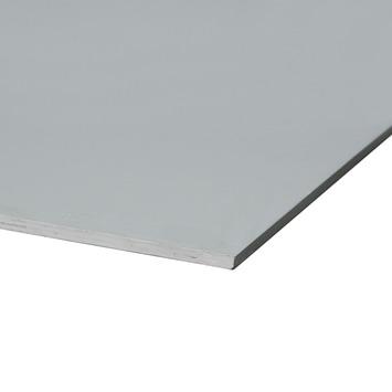 Hardhout multiplex gegrond 244x122 cm dikte 10 mm
