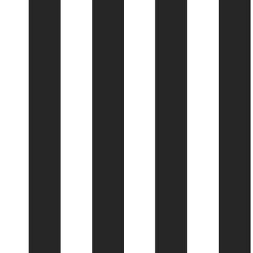 Vliesbehang strepen zwart-wit (dessin 100099)