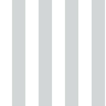 Vliesbehang strepen zilver (dessin 100100)