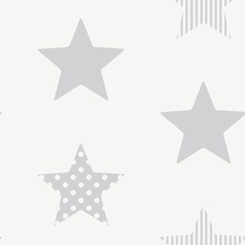 Vliesbehang superster zilver (dessin 100111)