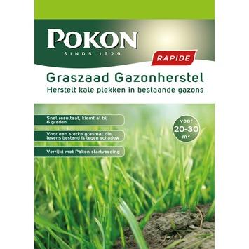 Pokon Graszaad Gazonherstel (pak 500 gr)