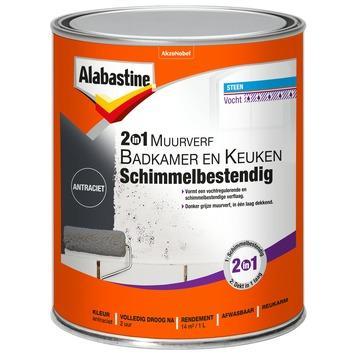 Alabastine 2in1 muurverf badkamer & keuken antraciet schimmelbestendig 1 l