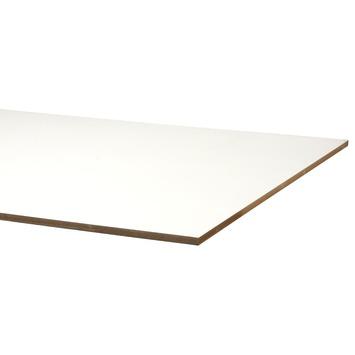 MDF plaat 244x122 cm dikte 18 mm met lakdraagfolie