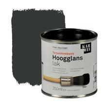 KARWEI lak hoogglans zwart extra dekkend 250 ml