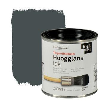 KARWEI lak hoogglans antraciet grijs extra dekkend 250 ml