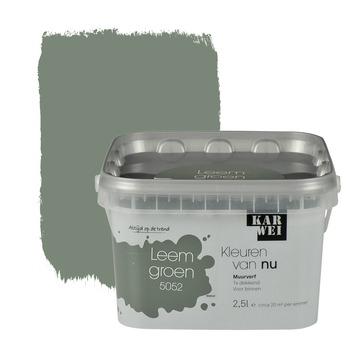 Karwei kleuren van nu muurverf mat leemgroen 2 5 l kopen for Betonlook verf gamma