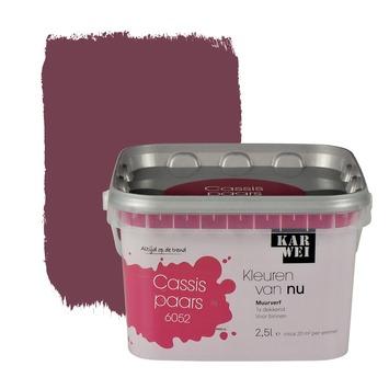 Karwei kleuren van nu muurverf mat cassispaars 2 5 l kopen for Betonlook verf praxis