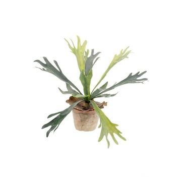 Kunstplant Herfsthoorn in pot 11 cm