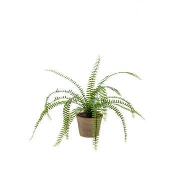 Kunstplant Varen Nephrolepis in pot 60 cm