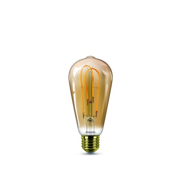 Led Lampen Karwei.Philips Led Filament Edison Goud E27 25w
