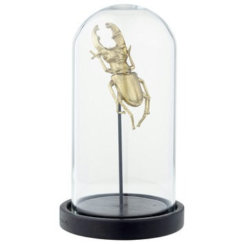 Stolp met insect messing