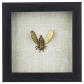 Fotolijst met insect,Bij in goud, 155x155x35
