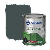 Sigma houtlak exterieur hoogglans RAL 7016 antracietgrijs 750 ml