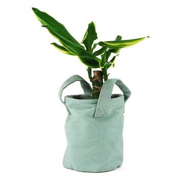 Plantenmand Lola groen van stof met coating 16x13 cm