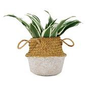 Plantenmand Nina gras met witte onderkant 16x13 cm