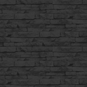 Vliesbehang odyssee zwart (dessin 101344)
