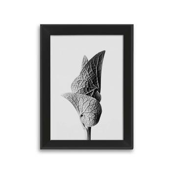 Fotolijst 1 hout zwart 10x15 cm