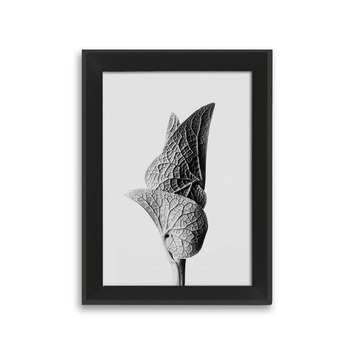 Fotolijst 1 hout zwart 13x18 cm