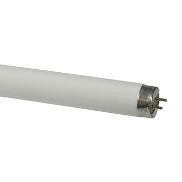 Philips TL-buis 18W koel wit
