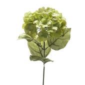 Kunstbloem hortensia groen 65 cm