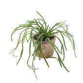 Kunstplant Rhipsalis pandora 35 cm in pot