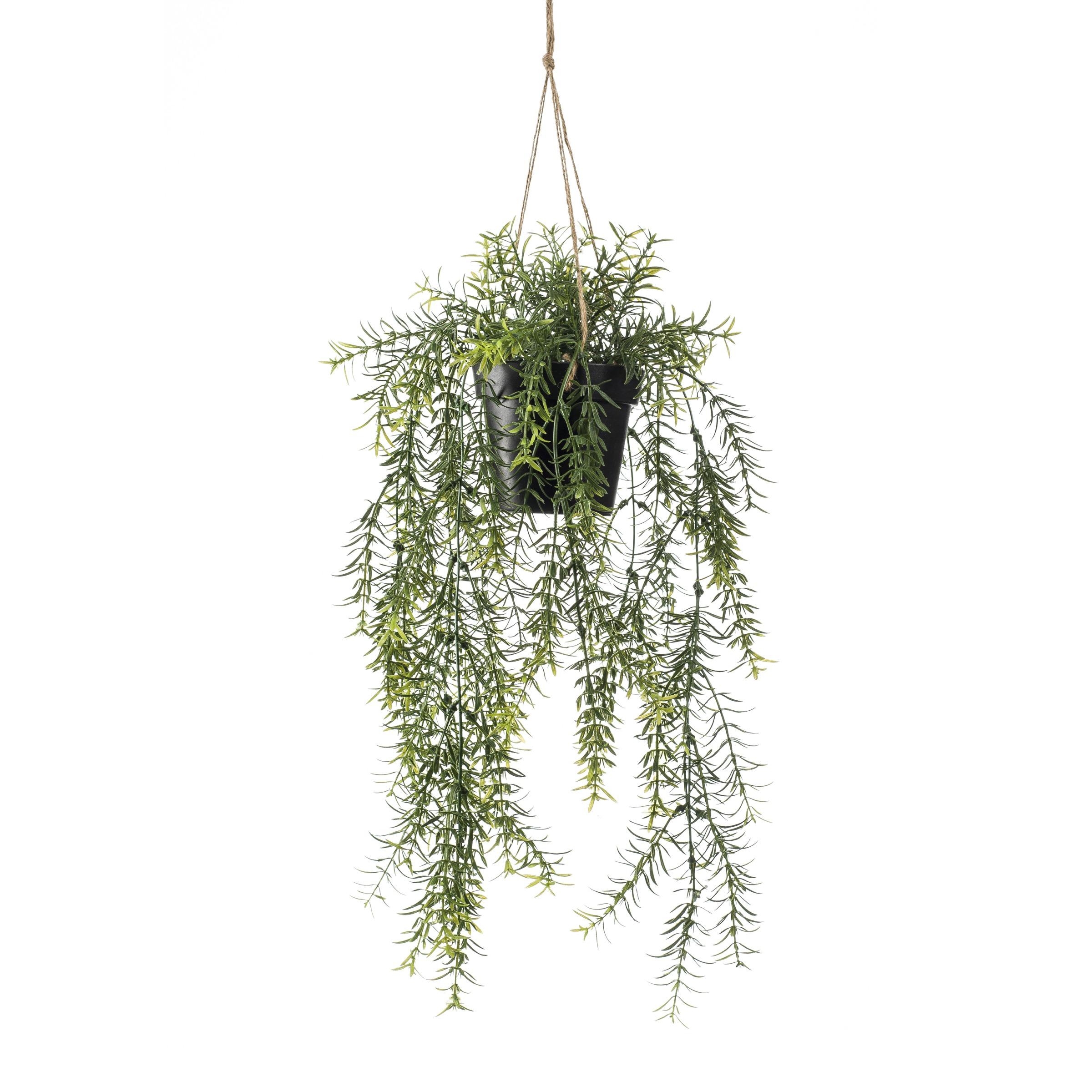 Kunstplant Asparagus 50 pot in pot